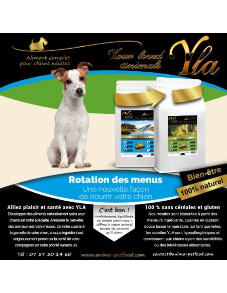 aliments-petit-chien-avec-sensibilite-cutanee-et-digestive