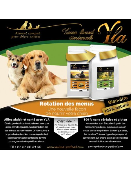 aliments-sans-cereale-pour-chien-sensible