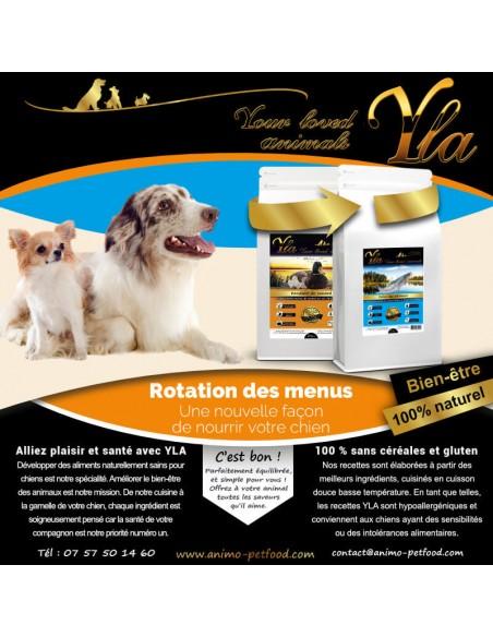 hypoallergenique-aliment-pour-chiens
