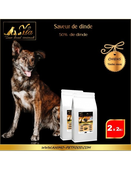 croquettes-pour-chiens-avec-systeme-digestif-sensible