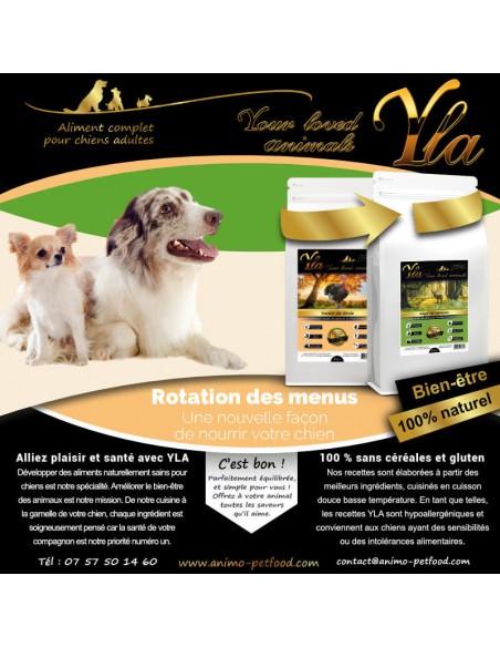 regime-special-intolerance-et-hypersensibilite-alimentaire-pour-chien