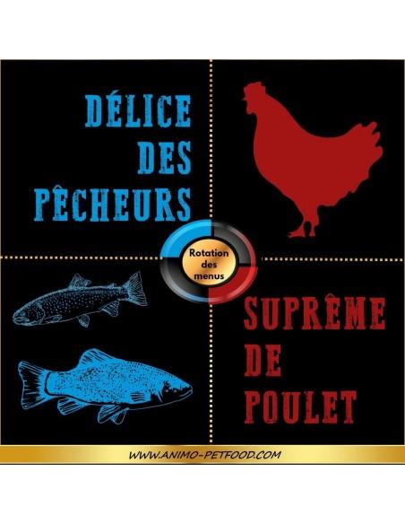 recettes-hypoalerrgeniques-pour-petit-chien-poulet-saumon-truite