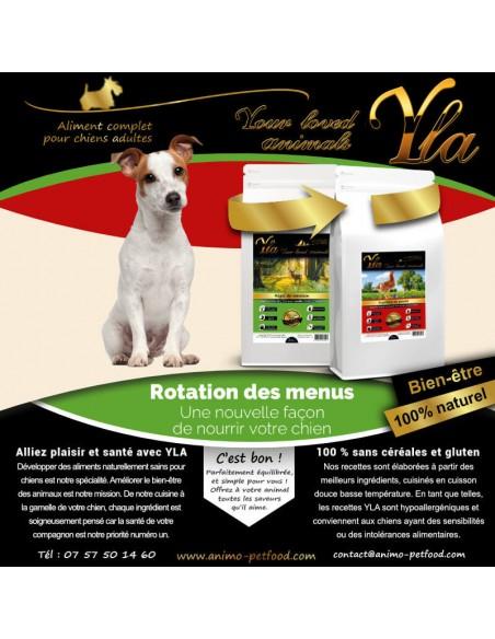 petit-chien-aliment-spécial-allergies-et-intolerances-alimentaire