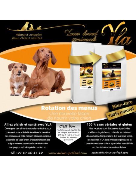 croquettes-pour-chien-a-sensibilite-digestive