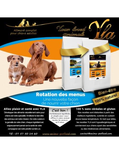 chien-avec-probleme-de-digestion-et-de-peau-alimentation-hypoallergenique