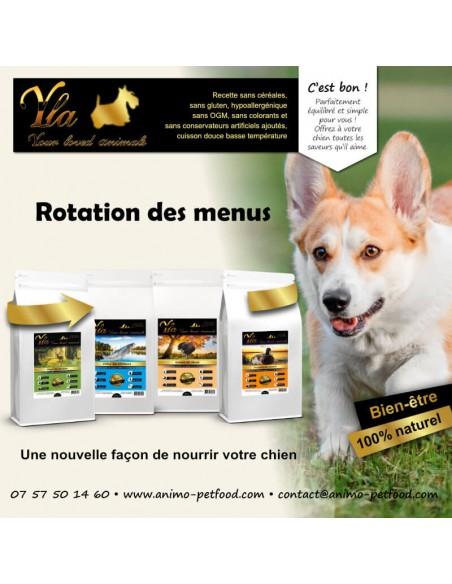 croquettes-sans-cereale-ni-gluten-pour-chien-sensible