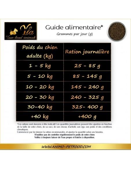guide-alimentaire-aliment-sans-cereale-petit-chien