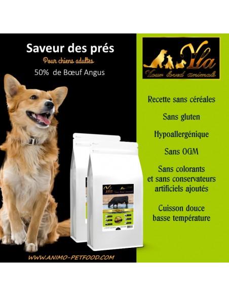 alimentation-pour-chien-speciale-troubles-gastro-intestinaux