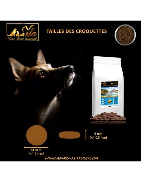 croquettes-sans-cereales-pour-chien-taille