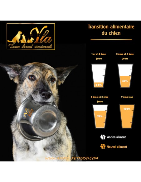 transition-alimentaire-chien