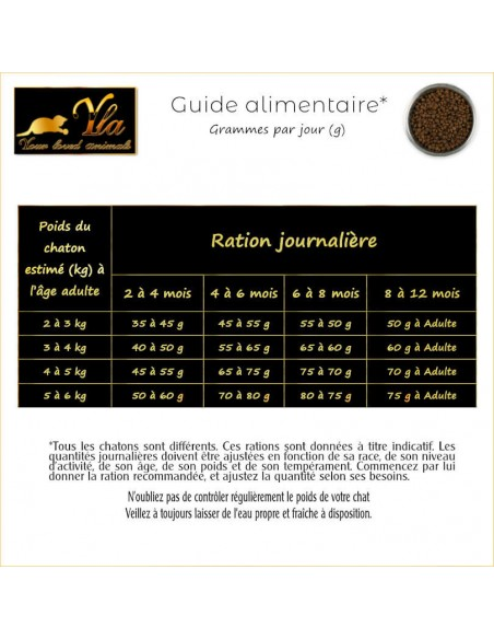 guide-alimentaire-chaton-croquettes-sans-cereales