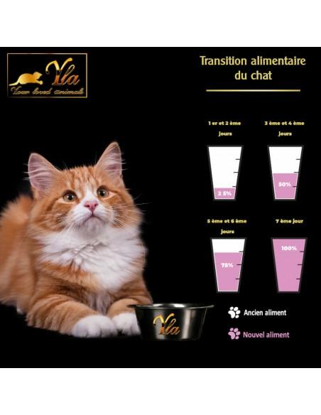 changement-alimentation-sans-cereale-pour-chaton