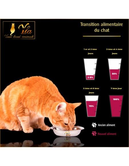 changer-l-alimentation-de-son-chat