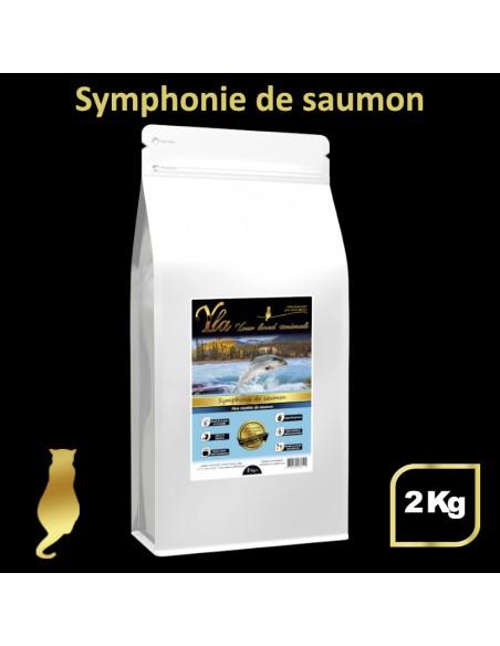 croquettes-pour-chat-sans-cereale-au-saumon