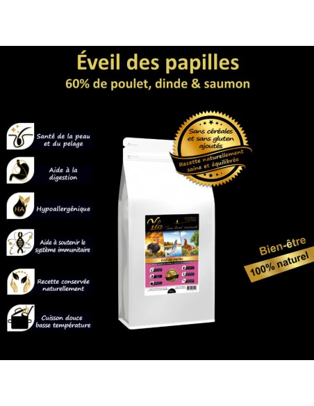 aliment-hypoallergenique-chiot-allergie-alimentaire