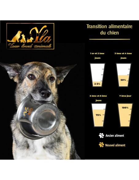 croquettes-sans-cereales-chien-transition-alimentaire