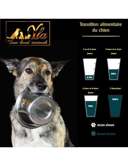 recette-chien-avec-allergie-alimentaire