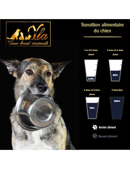 transition-alimentaire-comment-changer-la-nourriture-de-mon-chien