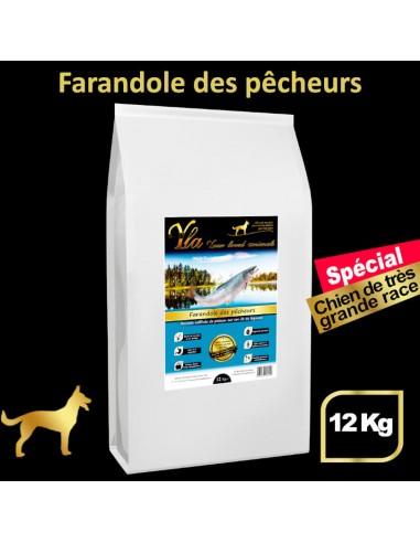 croquettes-sans-cereales-avec-glucosamine-et-chondroïtine-chien-adulte-grande-race