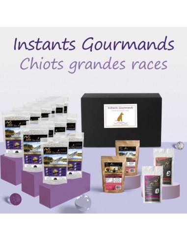 coffret-instants-gourmands-chiots-grandes-races