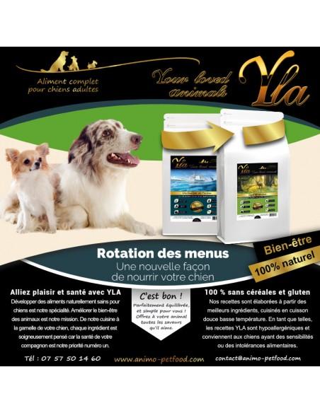 menus-hypoallergeniques-pour-chien-sensible