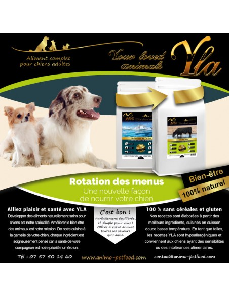 aliments-sans-cereale-chien-digestion-sensible