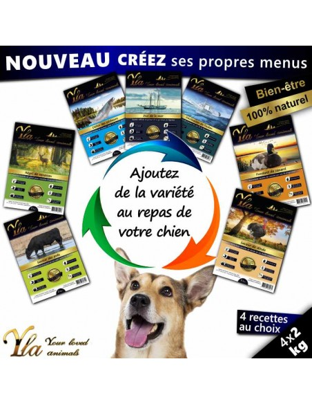 aliments-hypoallergeniques-pour-chien-avec-allergies-et-intolerances-alimentaires