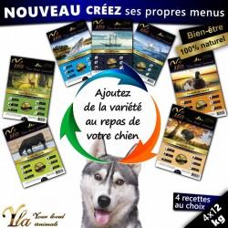 recettes-hypoallergeniques-pour-chien-avec-allergies-et-intolerances-alimentaires