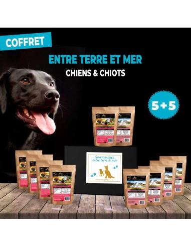 coffret-recompenses-sans-cereales-ni-gluten-pour-chiens-et-chiots