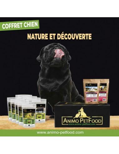 box gourmande pour chien