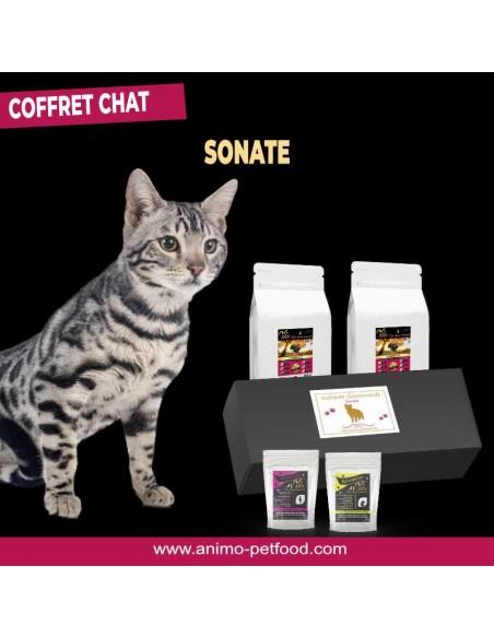 coffret box cadeau pour chat