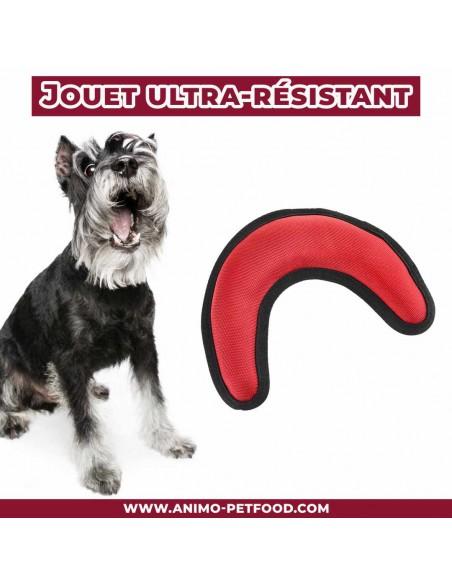 jouet-pour-chien-ultra-resistant