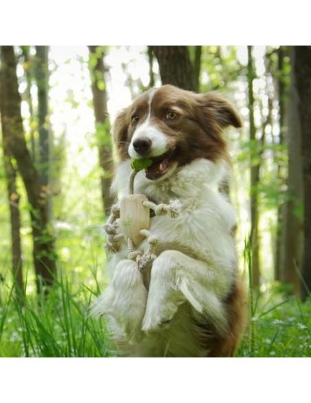 """Jouet pour chien """"Petit éléphant"""""""