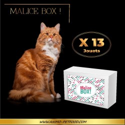 Malice box ! Pour chat