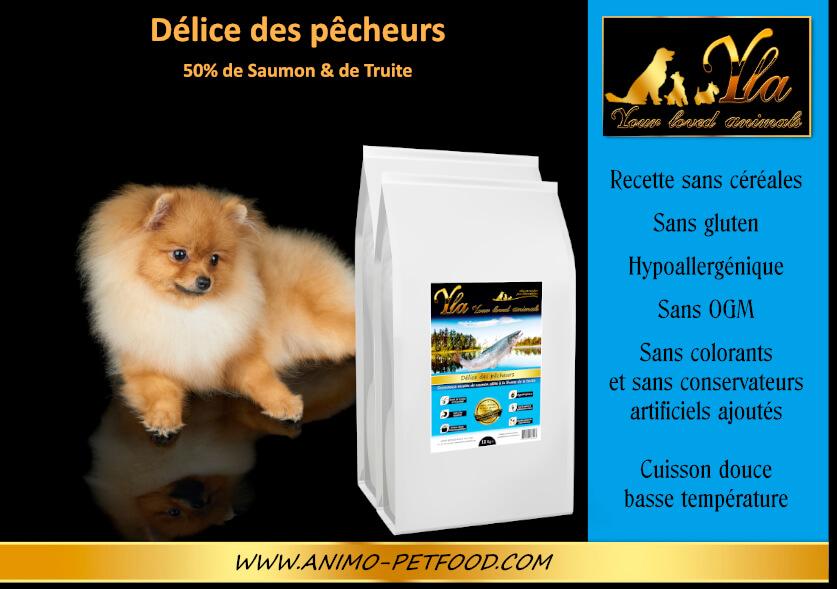 nourriture-pour-chiens-sensibles-ou-allergiques