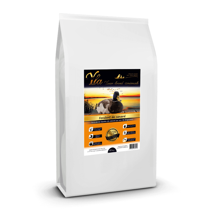 croquette-allergie-alimentaire-chien