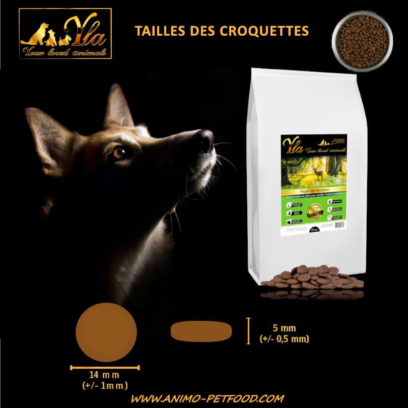 taille-croquette-hypoallergenique-pour-chien