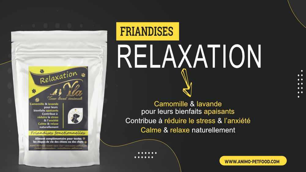 friandises anti stress pour chien