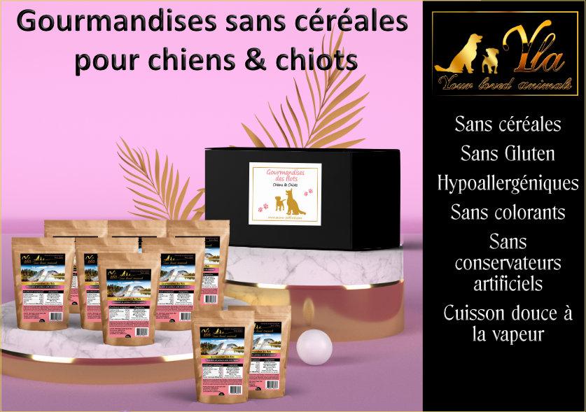 coffret-friandises-recompenses-sans-cereales-ni-gluten-pour-chien