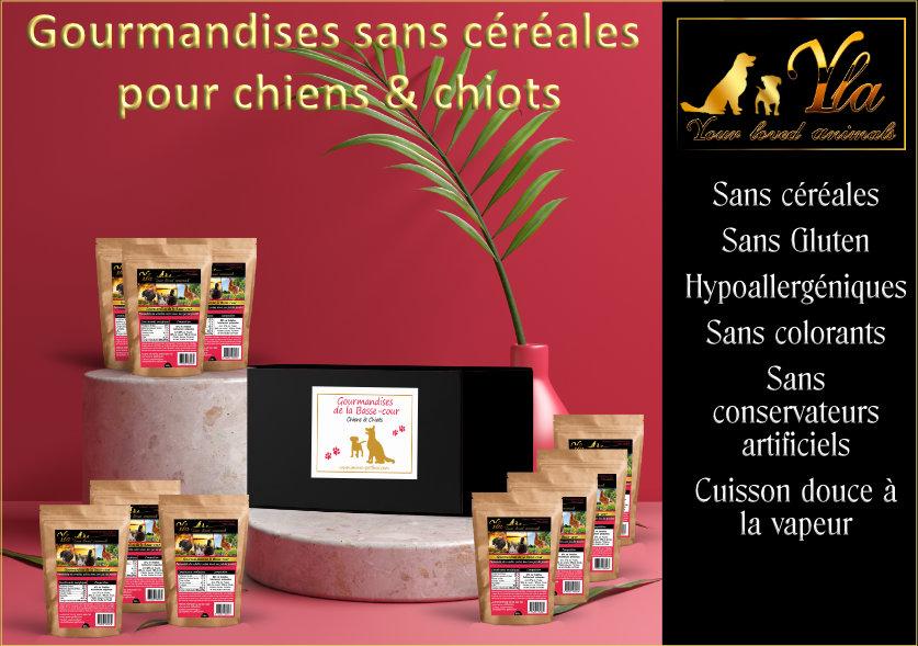 coffret-friandises-sans-cereales-pour-chien
