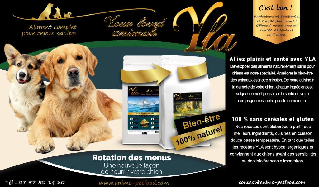 aliments-hypoallergeniques-pour-chien-sensible