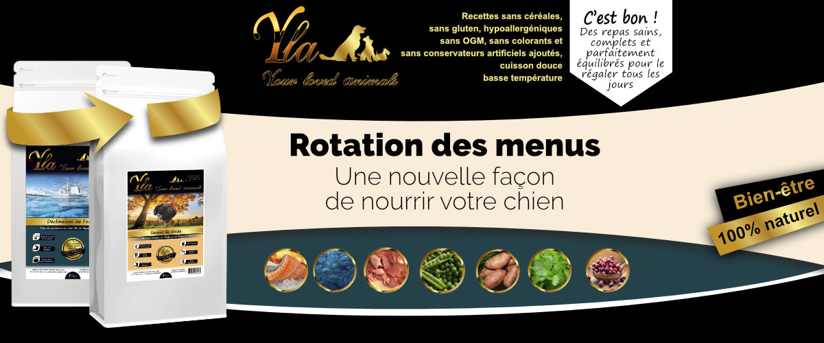 menu-chiens-avec-systeme-digestif-sensible
