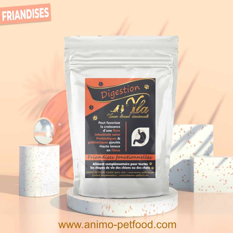 friandises digestion pour chien