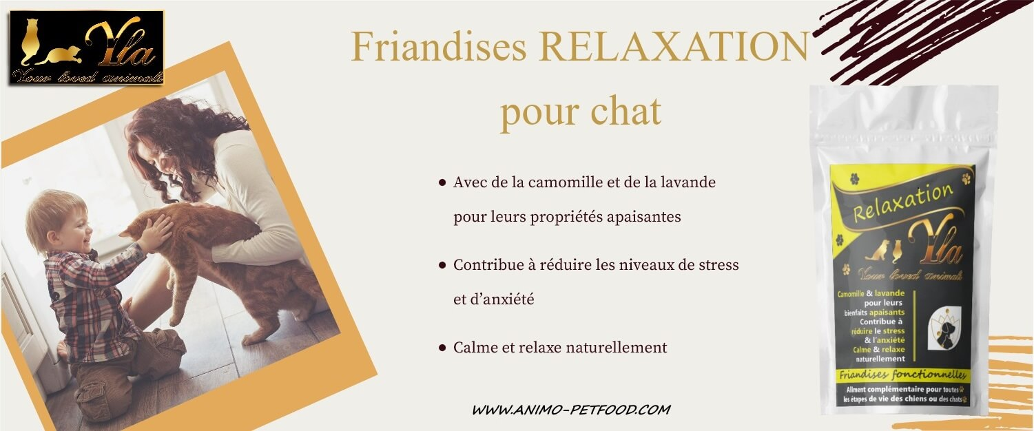 Friandises relaxation pour chat anti stress