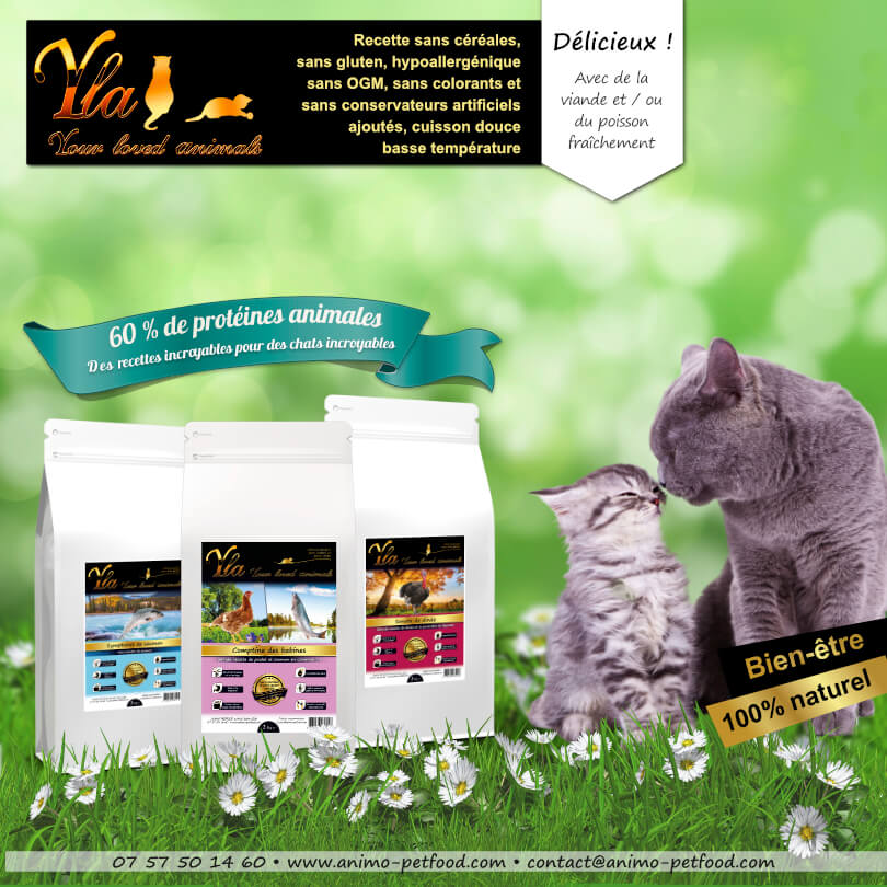 croquettes-sans-cereales-yla-chat