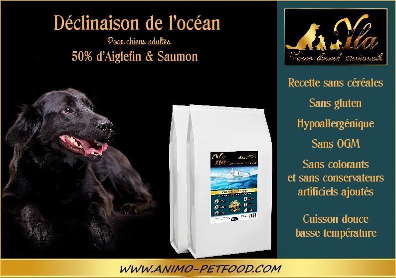 chien-alimentation-hypoallergénique-problemes-de-peau-ou-de-pelage