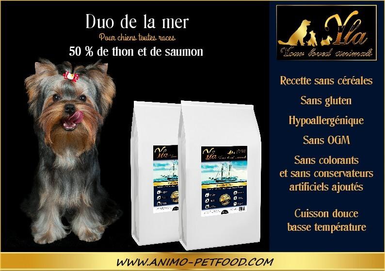 croquettes-gastronomique-pour-petit-chien-delicat