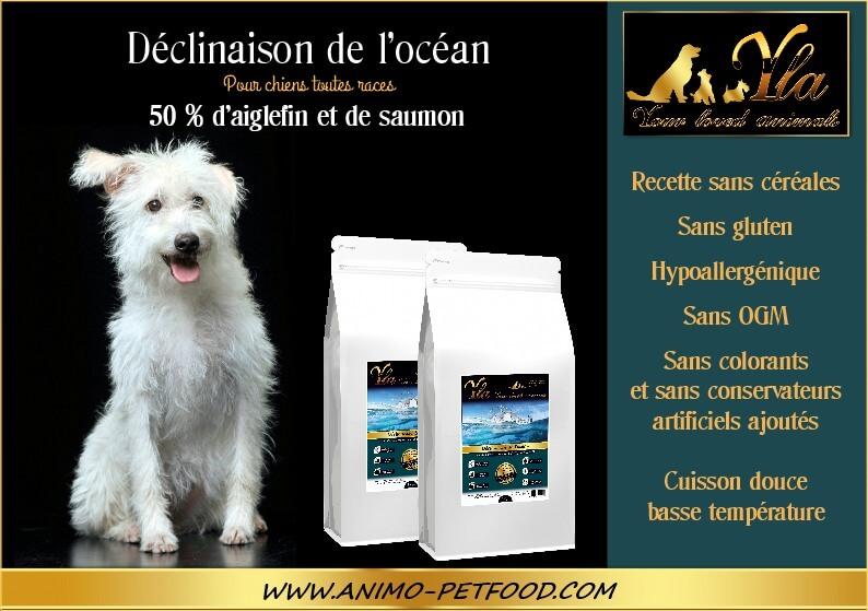 nourriture-pour-chien-peau-sensible-ou-digestion-délicate