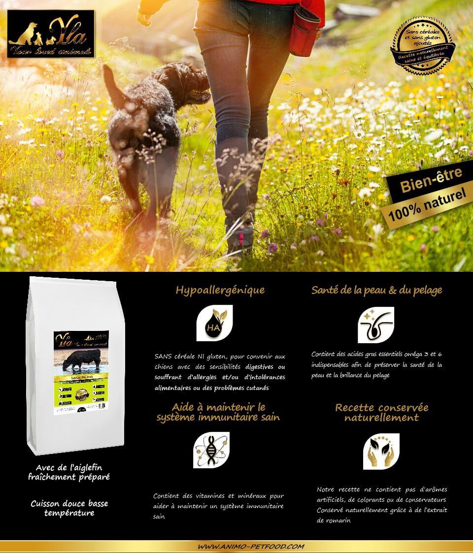 nourriture-sans-cereale-adaptee-au-chien-sensible