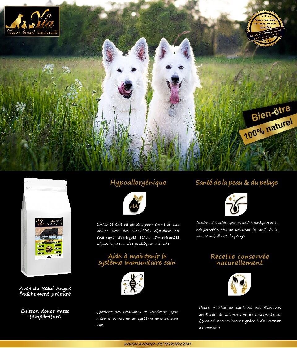 croquette-hypoallergenique-pour-chien-a-tendance-allergique